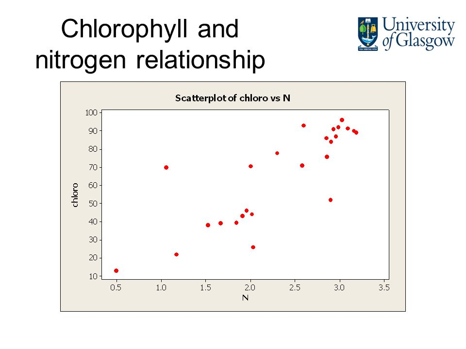 Chlorophyll and nitrogen relationship