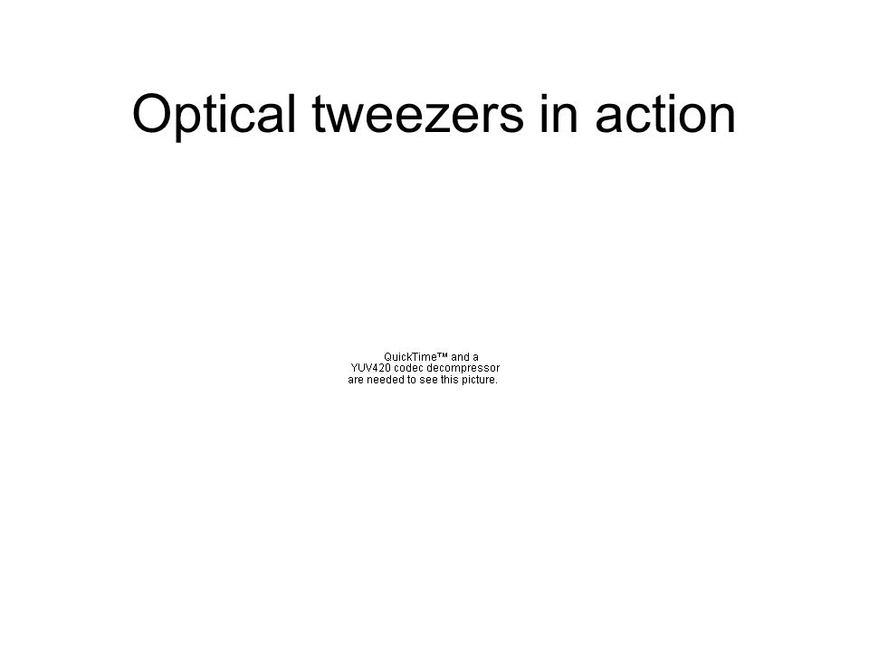The equipment Optical tweezers are based on high magnification microscope lenses –produces tightly focussed beam –provides visualisation of image Samples suspended in fluid –provides cooling –provides buoyancy
