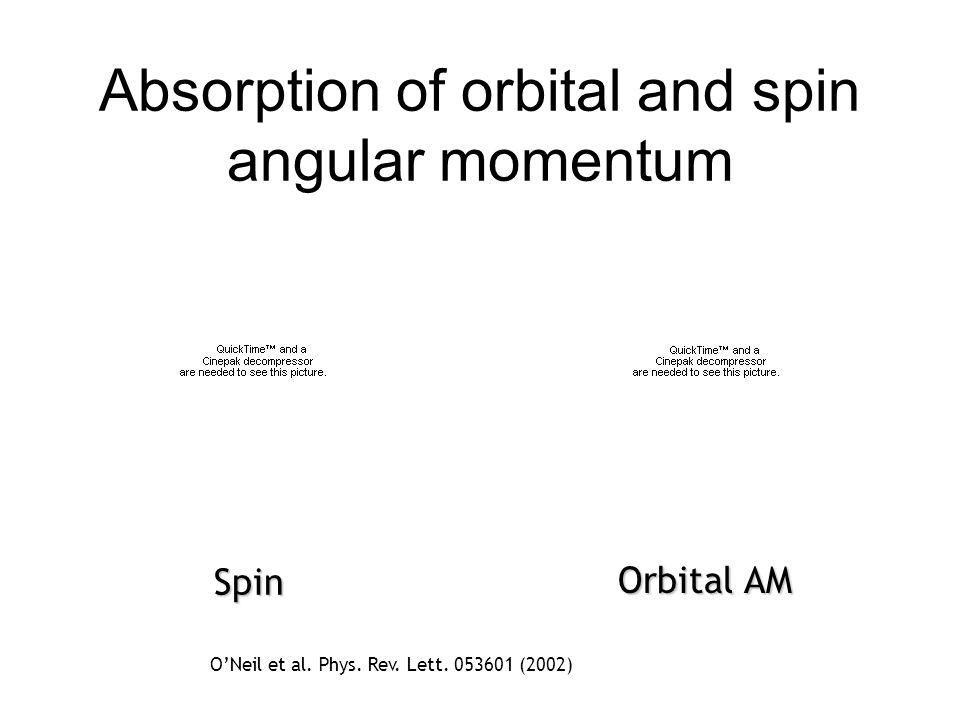 Absorption of orbital and spin angular momentum Orbital AM Spin ONeil et al. Phys. Rev. Lett. 053601 (2002)