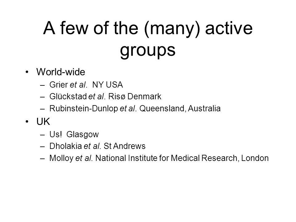 A few of the (many) active groups World-wide –Grier et al. NY USA –Glückstad et al. Risø Denmark –Rubinstein-Dunlop et al. Queensland, Australia UK –U