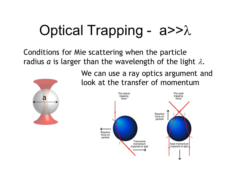 Optical Trapping - a>> Conditions for Mie scattering when the particle radius a is larger than the wavelength of the light. We can use a ray optics ar
