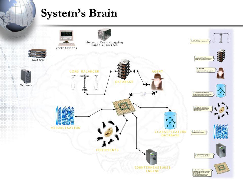 Systems Brain