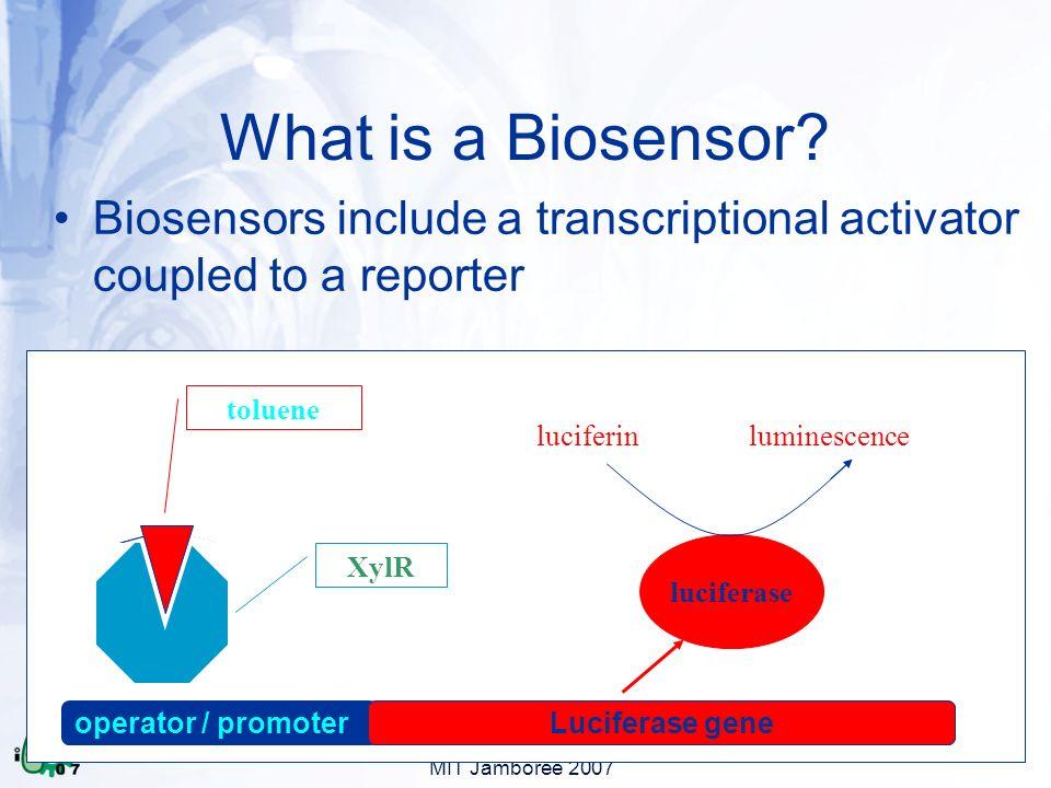 MIT Jamboree 2007 operator / promoterreporter gene() XylR toluene What is a Biosensor.