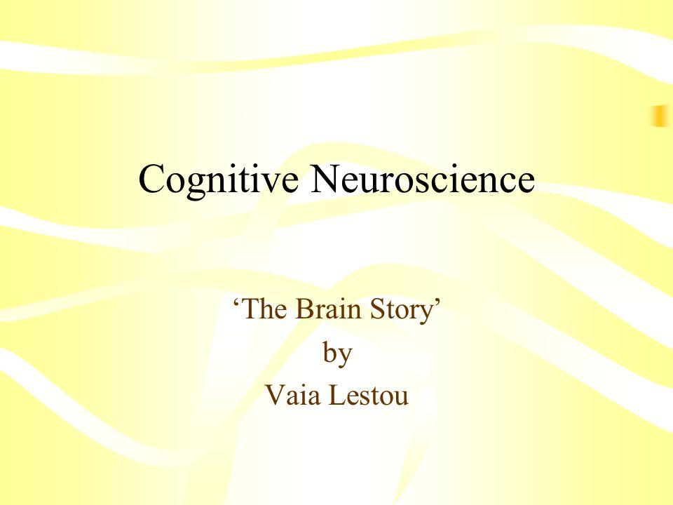 Cognitive Neuroscience The Brain Story by Vaia Lestou