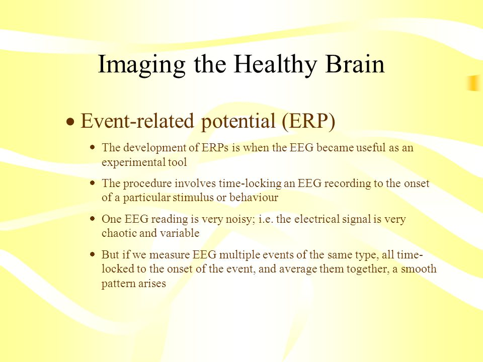 Imaging the Healthy Brain Event-related potential (ERP) The development of ERPs is when the EEG became useful as an experimental tool The procedure in