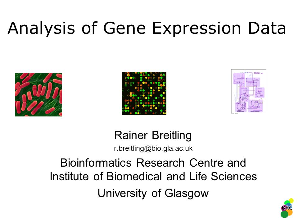 Analysis of Gene Expression Data Rainer Breitling r.breitling@bio.gla.ac.uk Bioinformatics Research Centre and Institute of Biomedical and Life Scienc