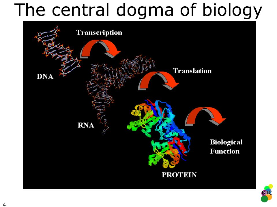 5 Genome information is complete for hundreds of organisms...