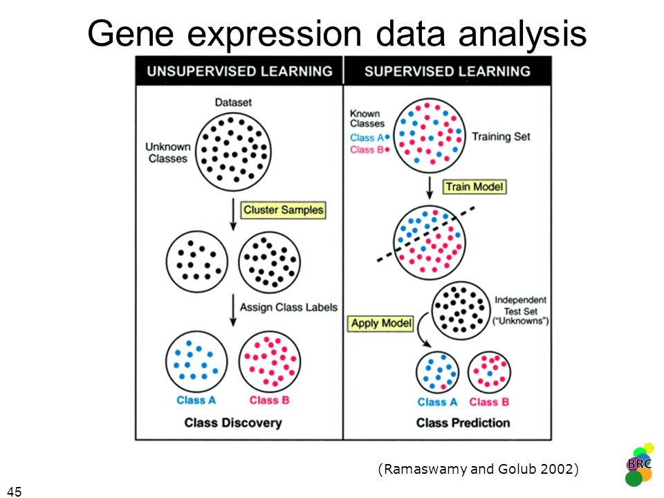 45 Gene expression data analysis (Ramaswamy and Golub 2002)