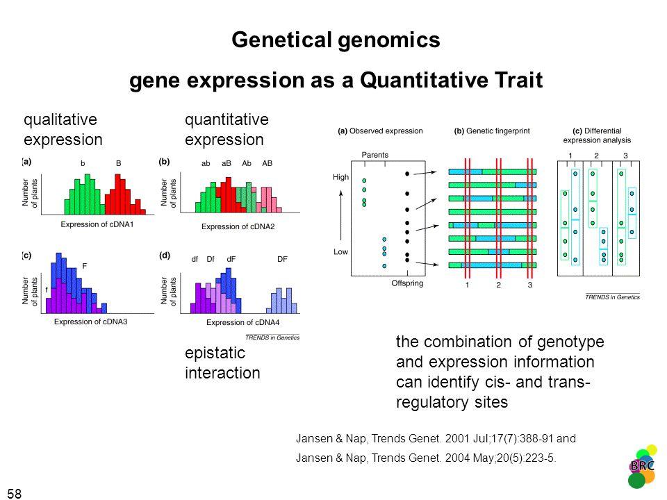 58 qualitative expression quantitative expression epistatic interaction Genetical genomics gene expression as a Quantitative Trait the combination of