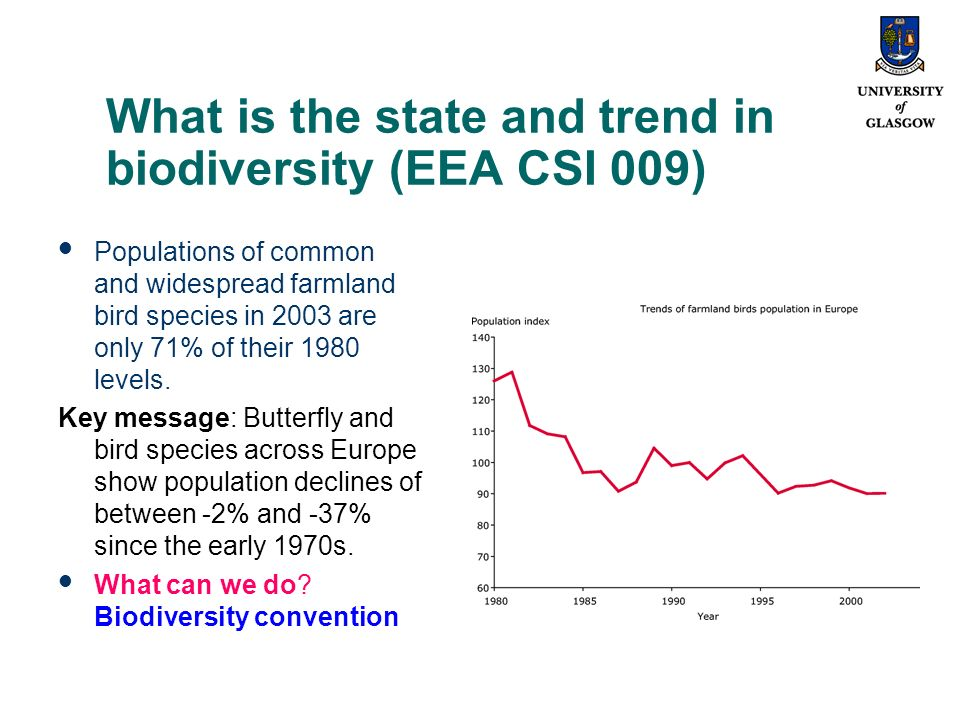What is the state and trend in biodiversity (EEA CSI 009) Populations of common and widespread farmland bird species in 2003 are only 71% of their 1980 levels.