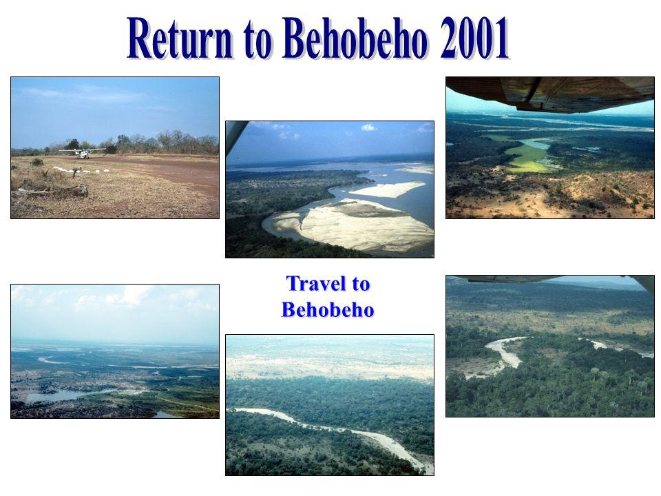 Travel to Behobeho