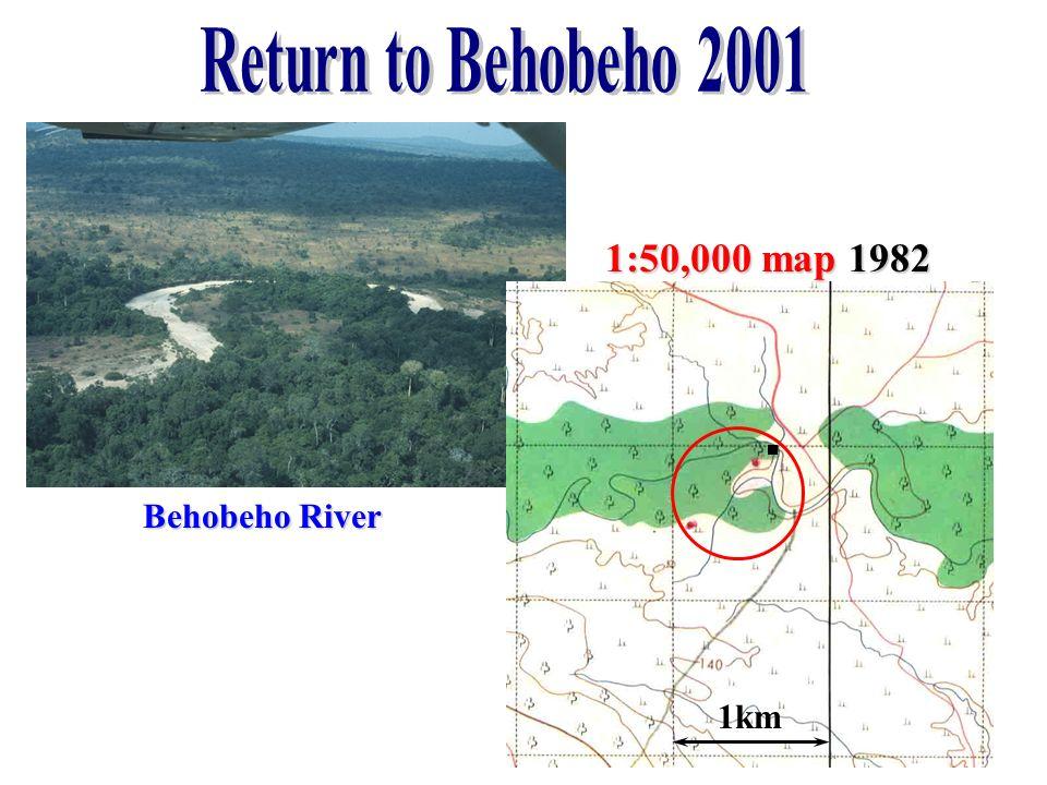1:50,000 map 1982 Behobeho River 1km