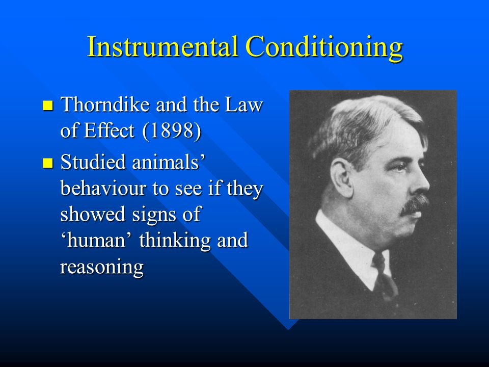 Instrumental Conditioning Thorndike and the Law of Effect (1898) Thorndike and the Law of Effect (1898) Studied animals behaviour to see if they showe