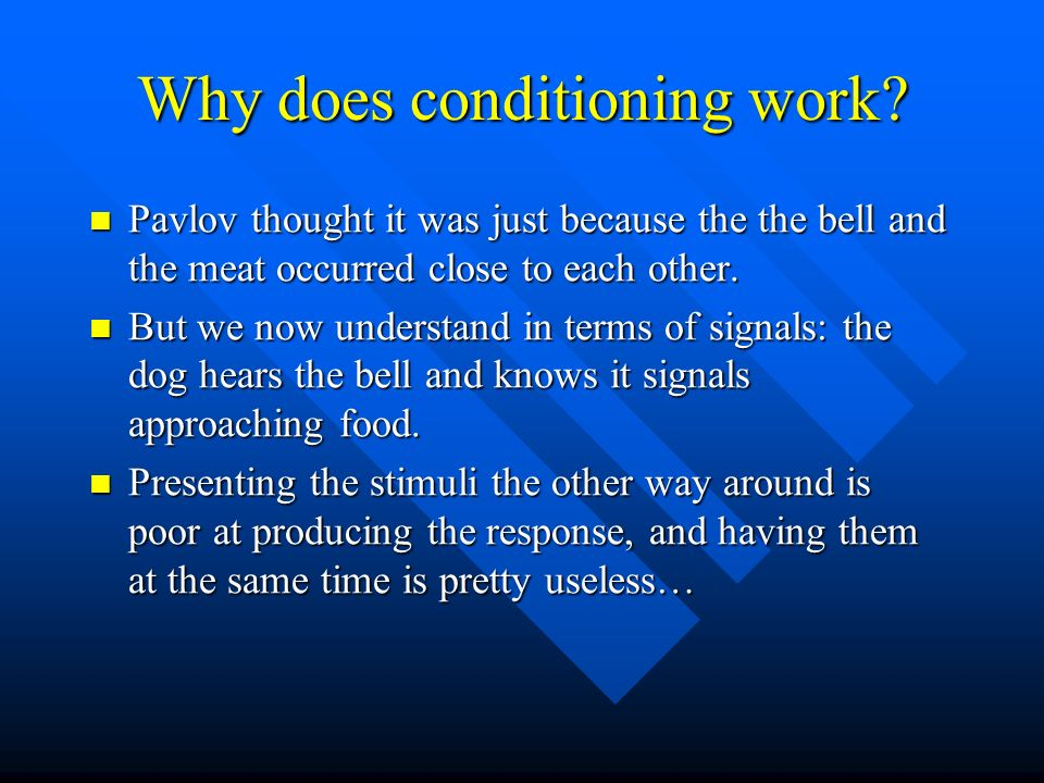 Why does conditioning work? Pavlov thought it was just because the the bell and the meat occurred close to each other. Pavlov thought it was just beca