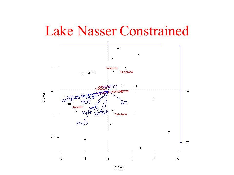 Lake Nasser Constrained