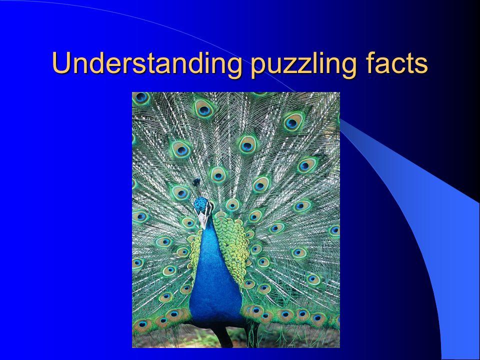 Understanding puzzling facts