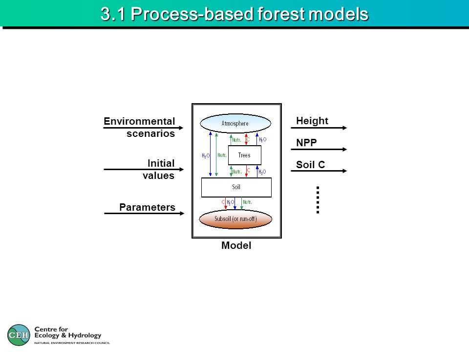 3.1 Process-based forest models Soil C NPP Height Environmental scenarios Initial values Parameters Model