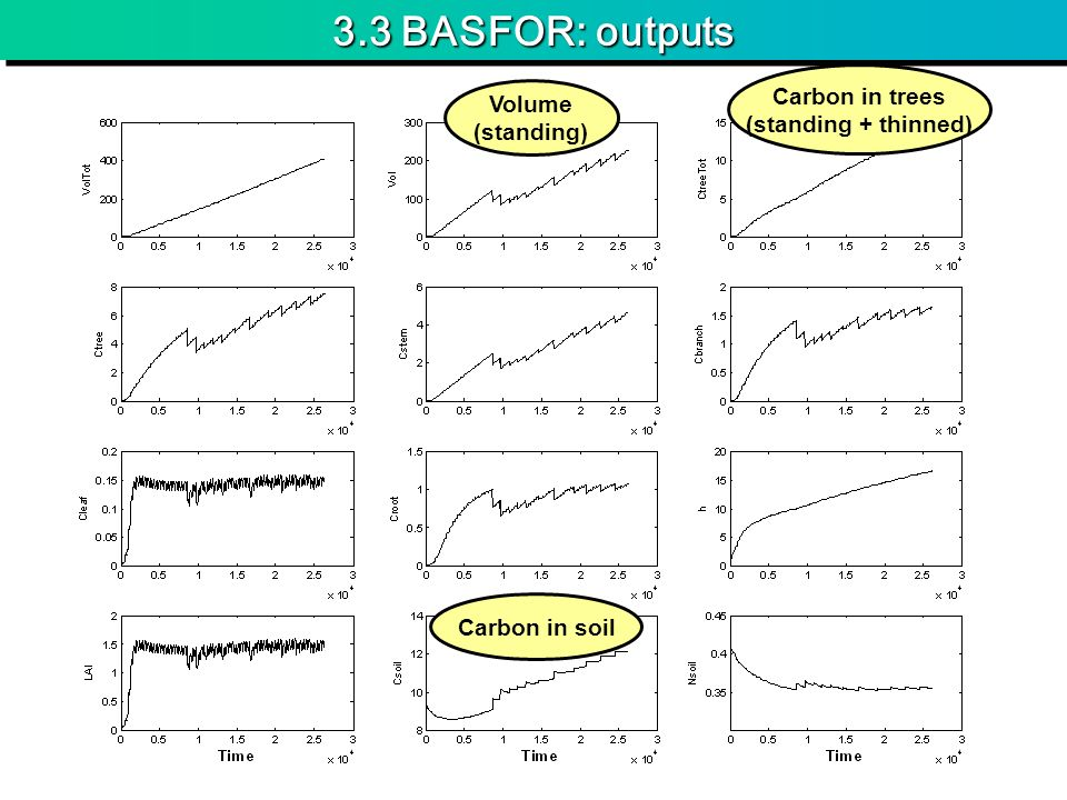 3.3 BASFOR: outputs Volume (standing) Carbon in trees (standing + thinned) Carbon in soil