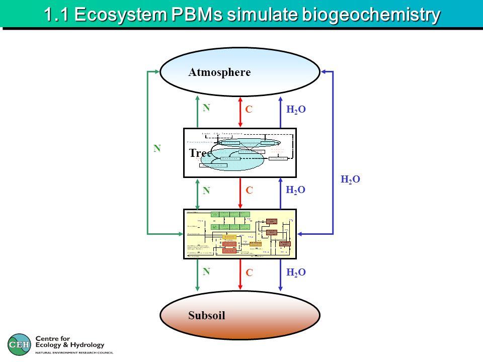1.1 Ecosystem PBMs simulate biogeochemistry Atmosphere Tree Soil Subsoil H2OH2O H2OH2O H2OH2O H2OH2OC C C N N N N
