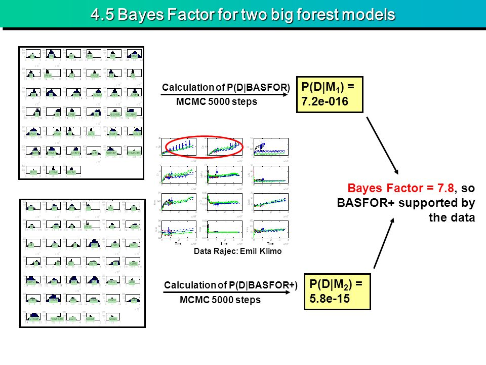 4.5 Bayes Factor for two big forest models MCMC 5000 steps Calculation of P(D|BASFOR) Calculation of P(D|BASFOR+) Data Rajec: Emil Klimo P(D|M 1 ) = 7.2e-016 P(D|M 2 ) = 5.8e-15 Bayes Factor = 7.8, so BASFOR+ supported by the data
