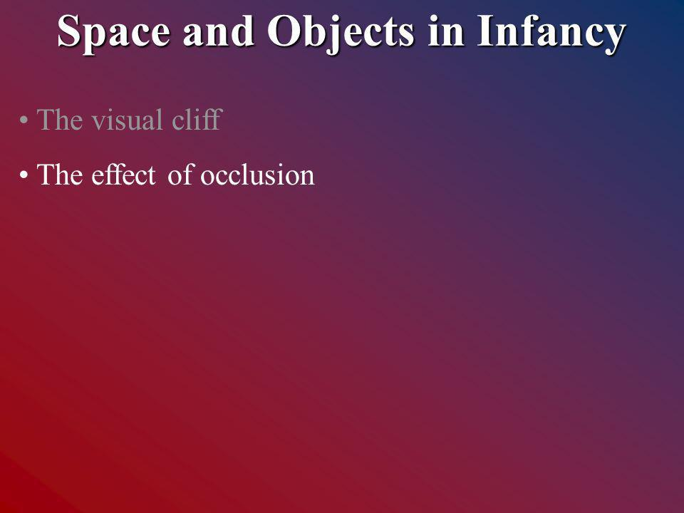 Space and Objects in Infancy The visual cliff The effect of occlusion