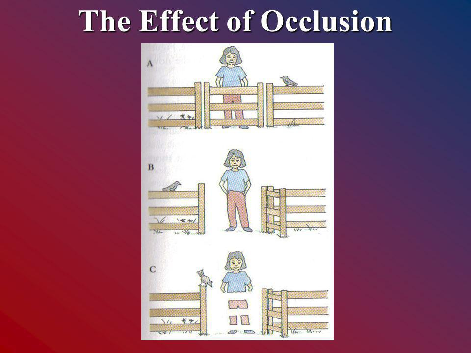 The Effect of Occlusion