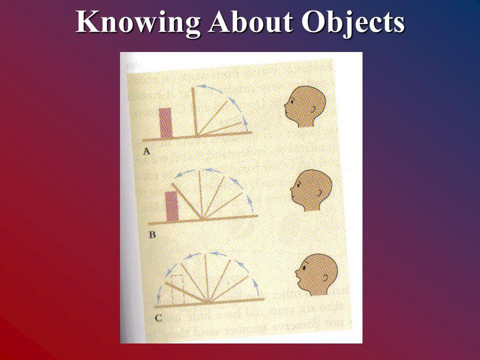 Knowing About Objects