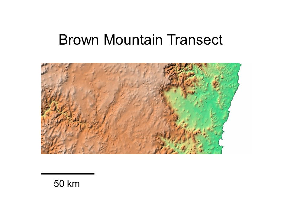 Brown Mountain Transect 50 km
