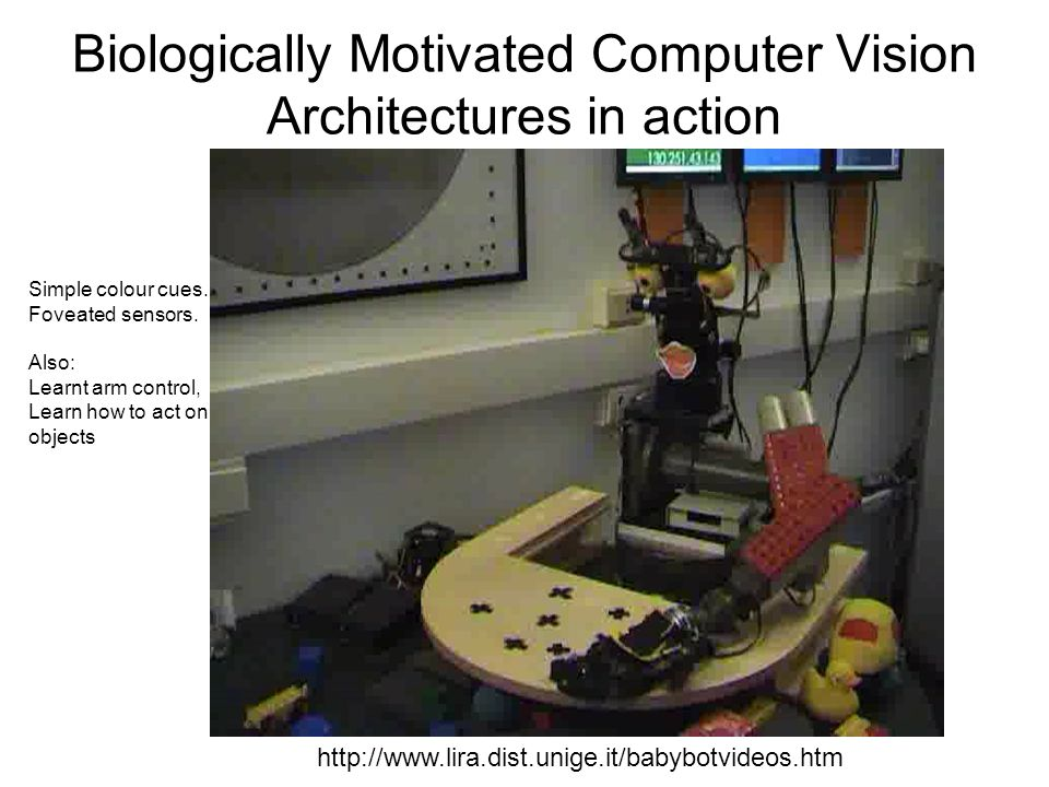 Biologically Motivated Computer Vision Architectures in action http://www.lira.dist.unige.it/babybotvideos.htm Simple colour cues.
