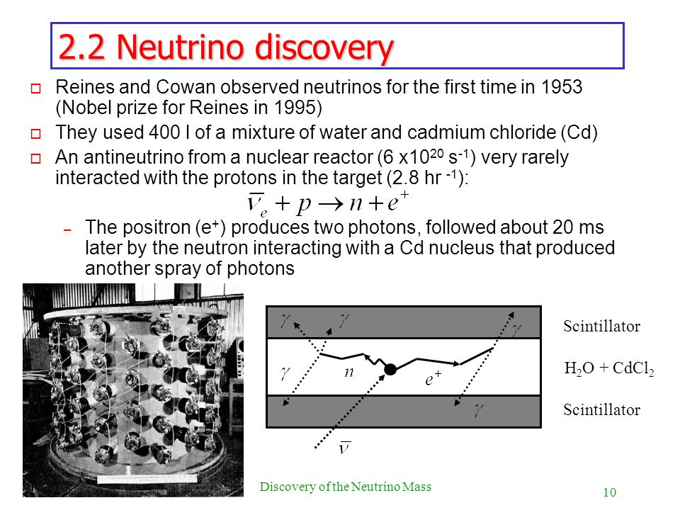 10 Discovery of the Neutrino Mass 2.2 Neutrino discovery o Reines and Cowan observed neutrinos for the first time in 1953 (Nobel prize for Reines in 1