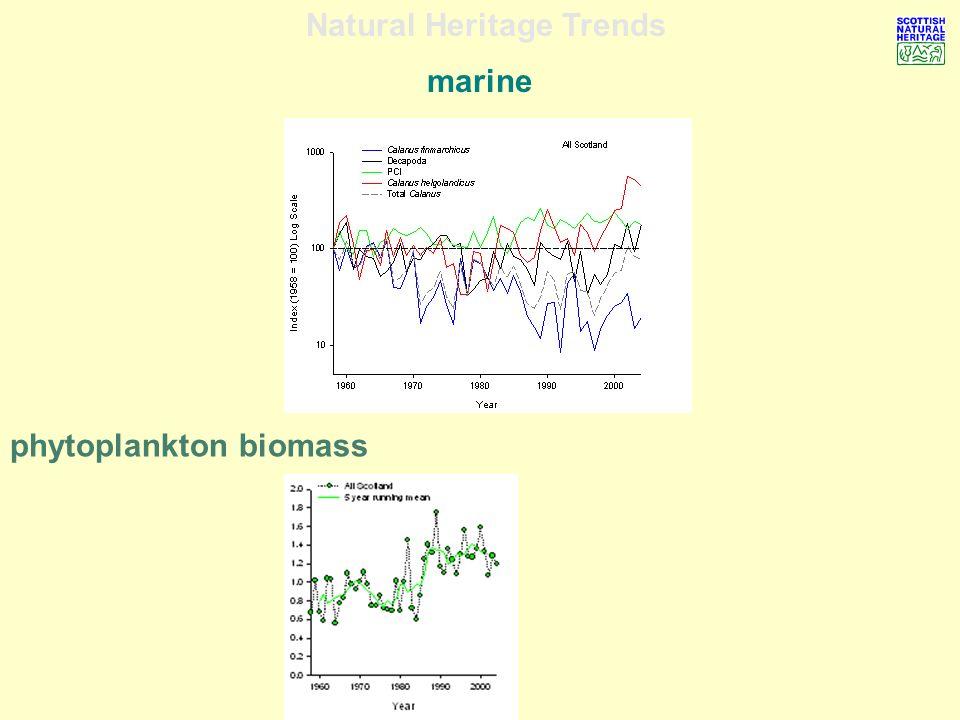 Natural Heritage Trends marine phytoplankton biomass