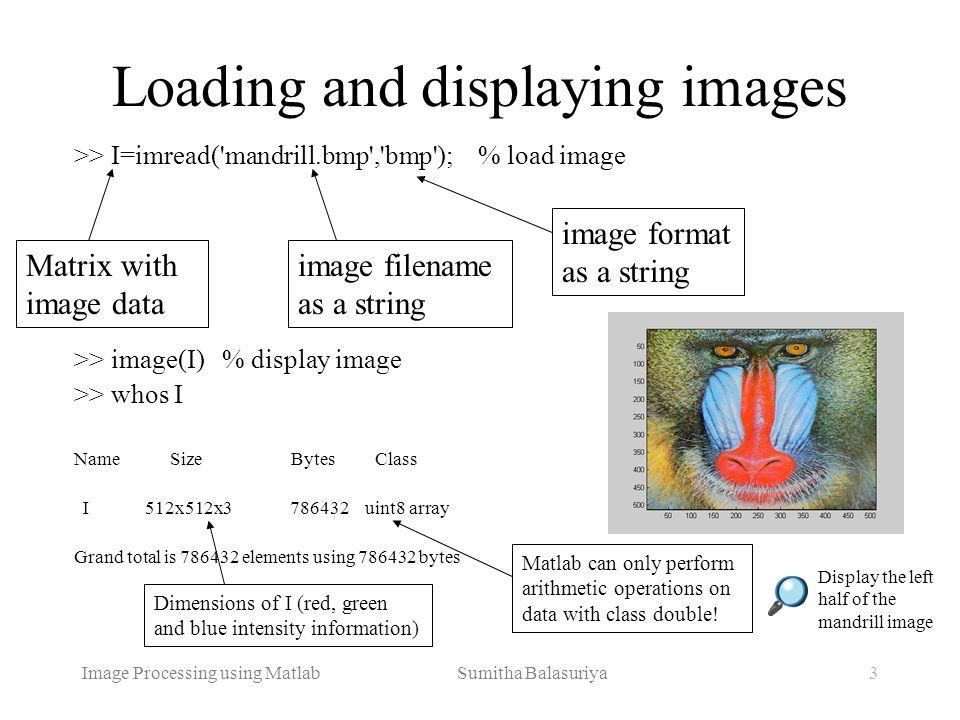 Image Processing using Matlab Sumitha Balasuriya3 Loading and displaying images >> I=imread('mandrill.bmp','bmp'); % load image >> image(I) % display