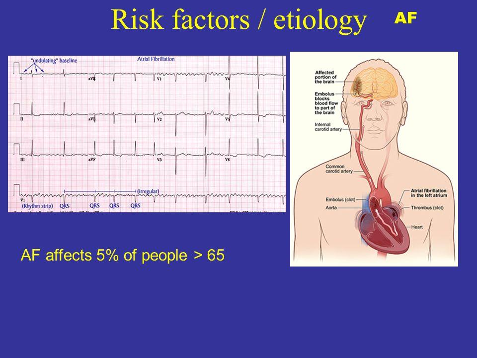 Risk factors / etiology AF AF affects 5% of people > 65