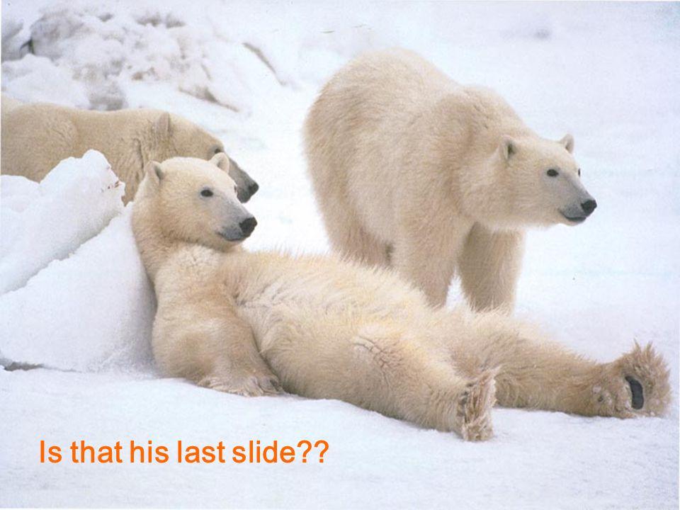 Is that his last slide??