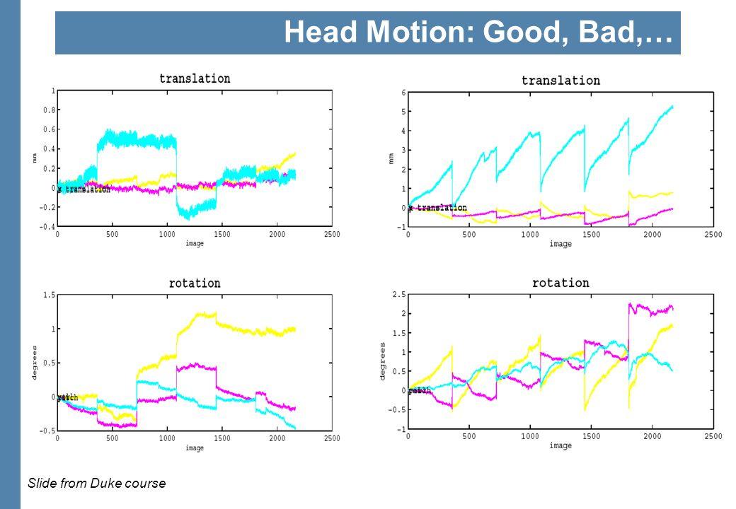 Head Motion: Good, Bad,… Slide from Duke course