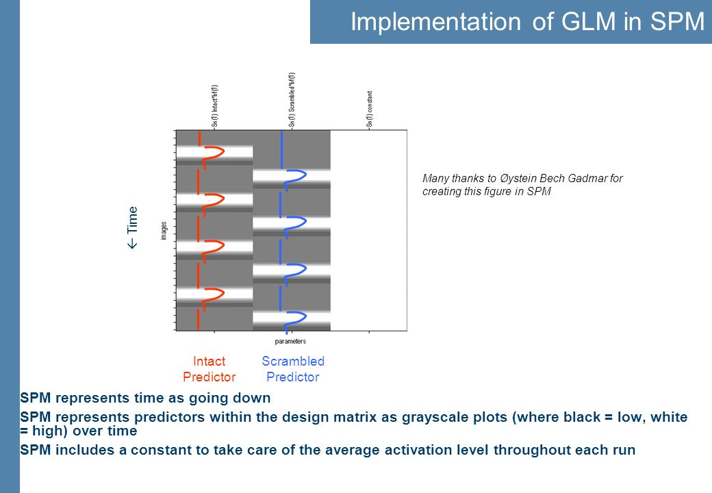 Implementation of GLM in SPM SPM represents time as going down SPM represents predictors within the design matrix as grayscale plots (where black = lo