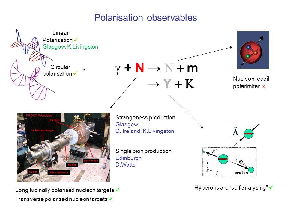 g8b preliminary results - Full lamba polarization .