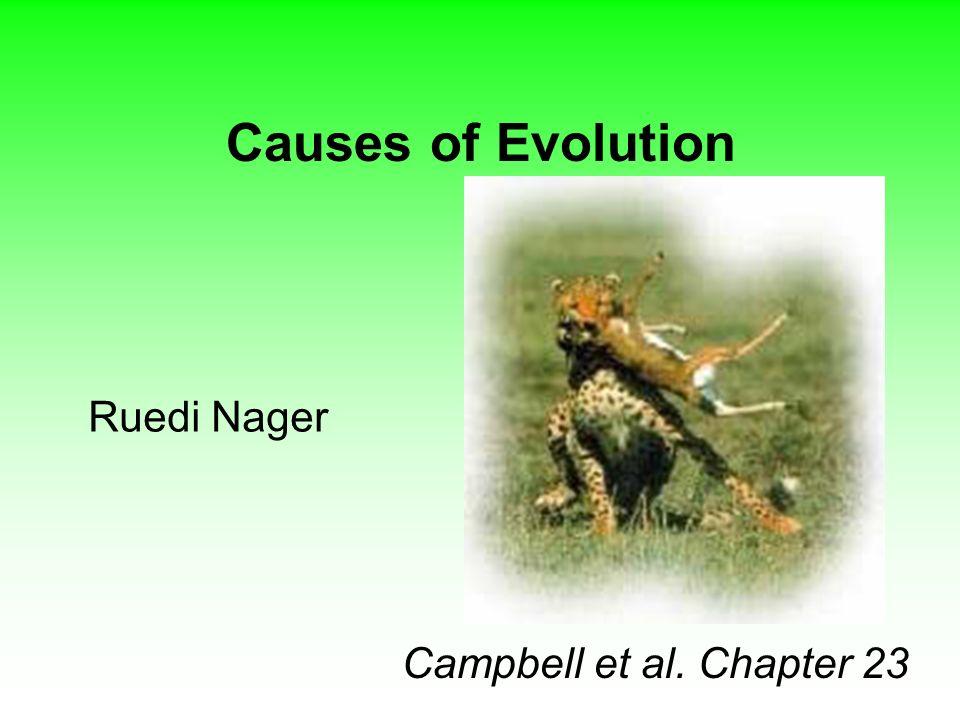 Causes of Evolution 1.