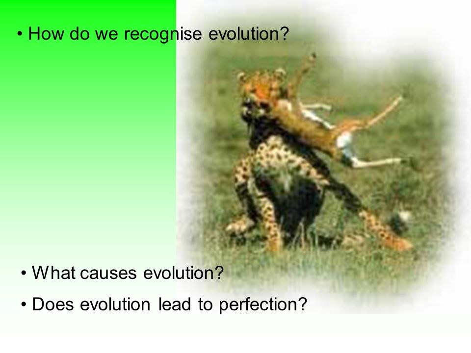 How do we recognise evolution? What causes evolution? Does evolution lead to perfection?