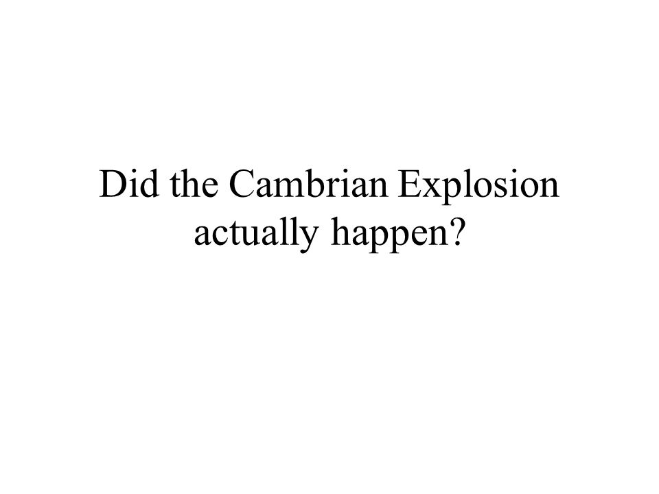 Did the Cambrian Explosion actually happen
