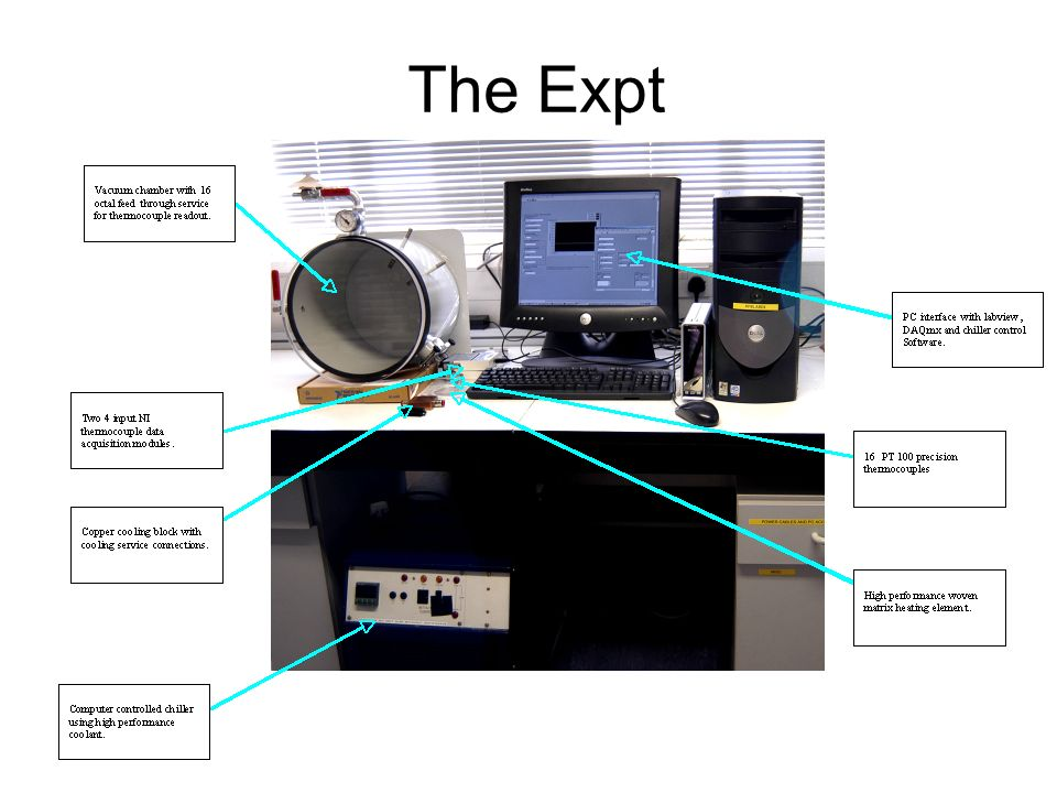 The Expt
