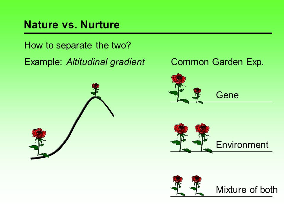 Populations are polymorphic Nature vs.
