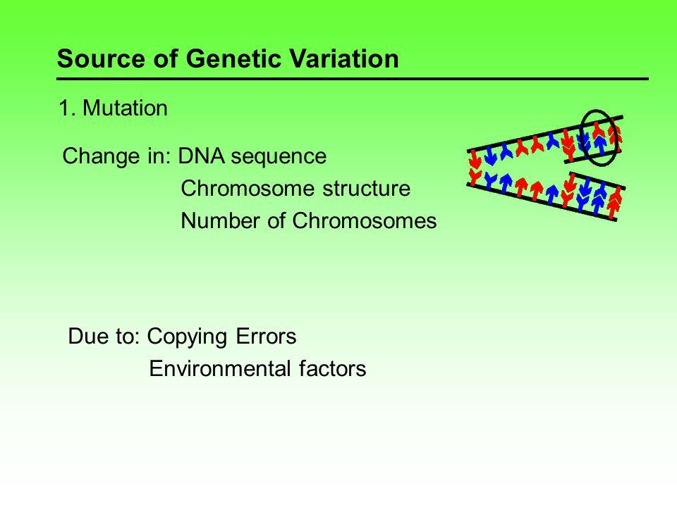 Source of Genetic Variation 2.