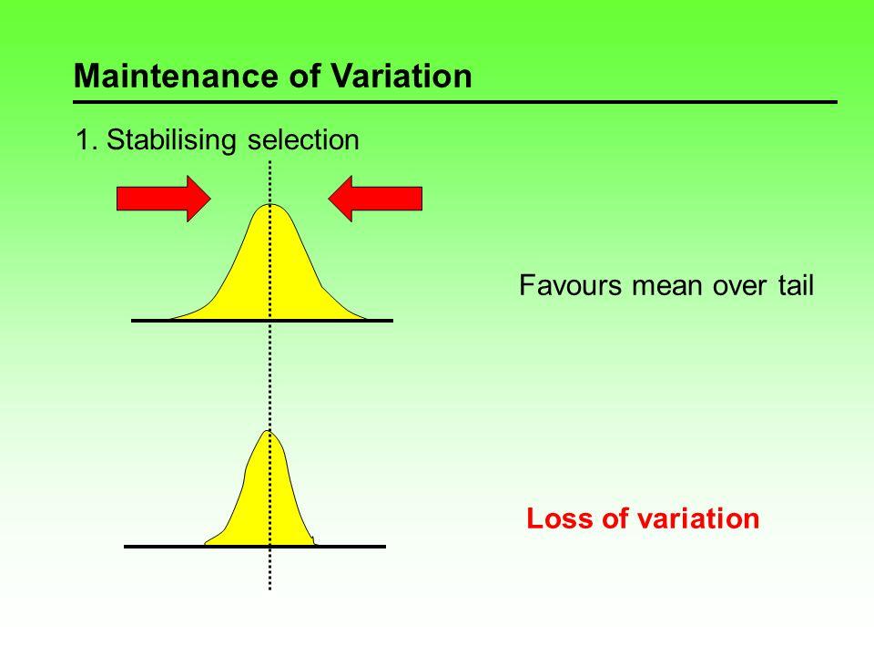 Maintenance of Variation 1.