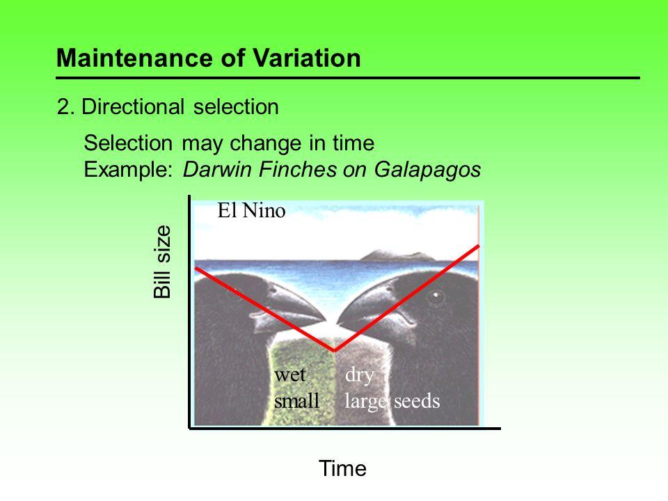 Maintenance of Variation 2.
