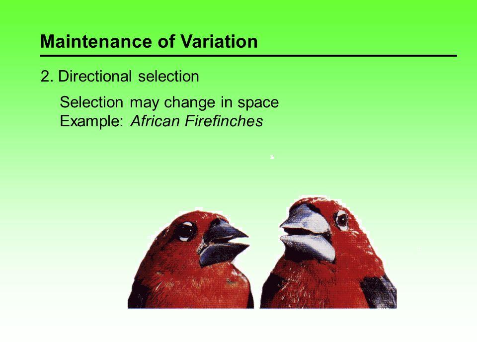 Maintenance of Variation 3.