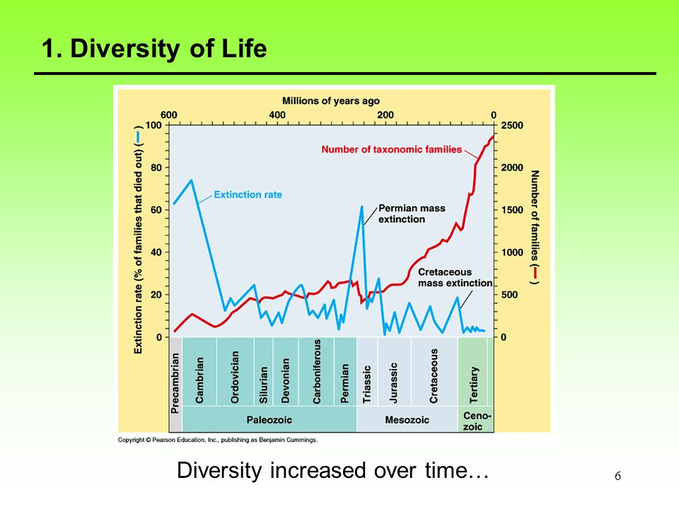 7 1. Diversity of Life … with some interuptions