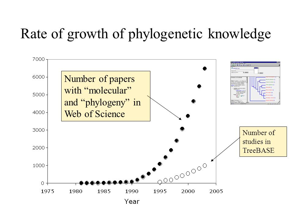 Rate of growth of phylogenetic knowledge Number of papers with molecular and phylogeny in Web of Science Number of studies in TreeBASE