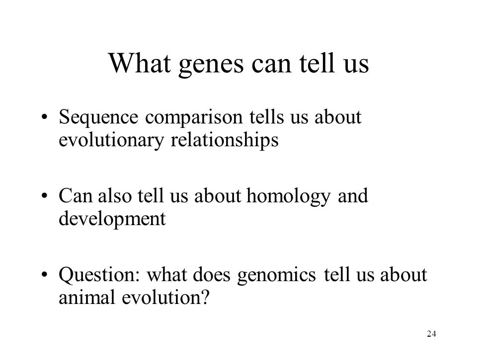 24 What genes can tell us Sequence comparison tells us about evolutionary relationships Can also tell us about homology and development Question: what