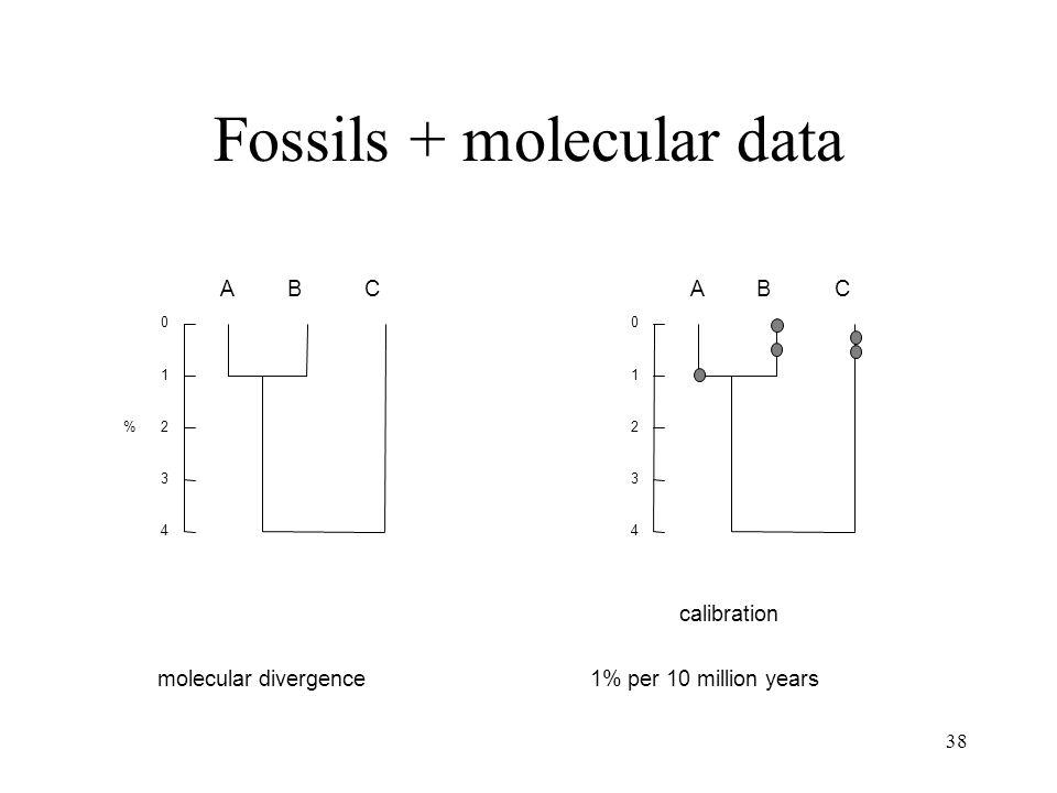38 ABC 0 1 2 3 4 ABC 0 1 2 3 4 molecular divergence calibration 1% per 10 million years % Fossils + molecular data